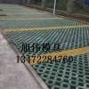 塑料九孔草坪砖模具生产商销售价